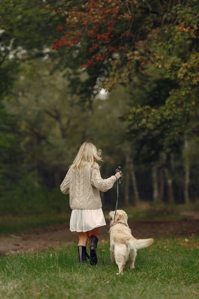 母亲和女儿在玩狗秋天公园的一家人宠物_11190981