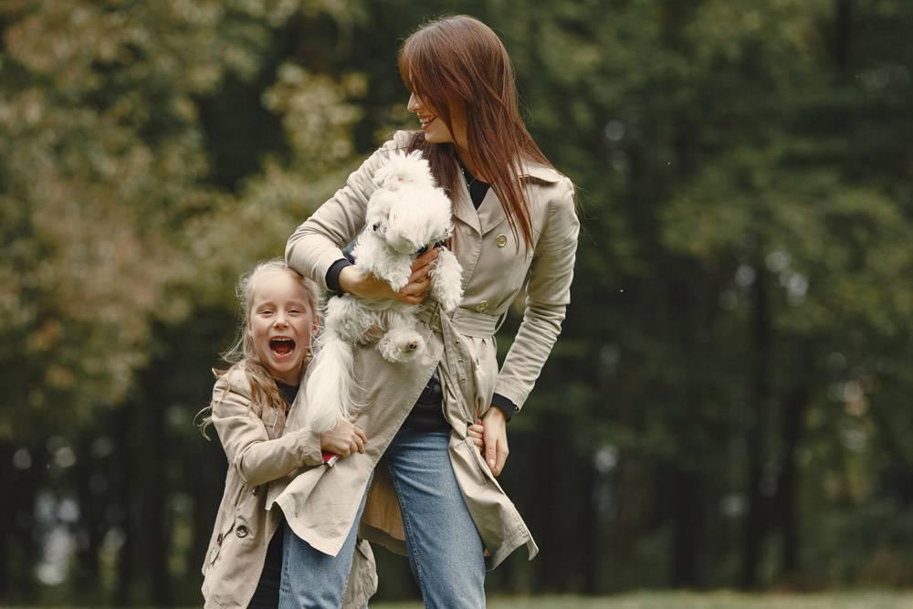 母亲和女儿在玩狗秋天公园的一家人宠物_11191161
