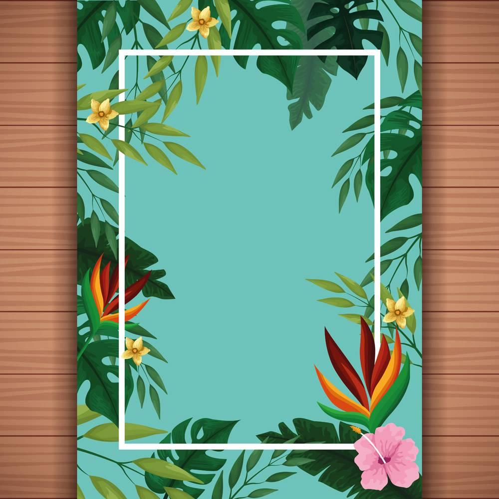 带边框的夏季空白卡片_4794952