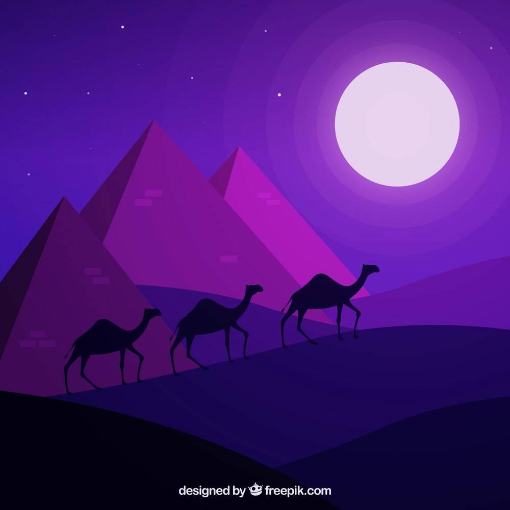平坦的夜景有埃及金字塔和骆驼大篷车_2730936