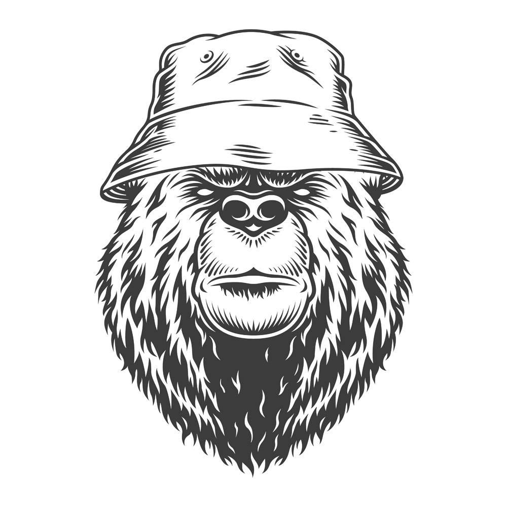 巴拿马复古熊头帽子_7989110