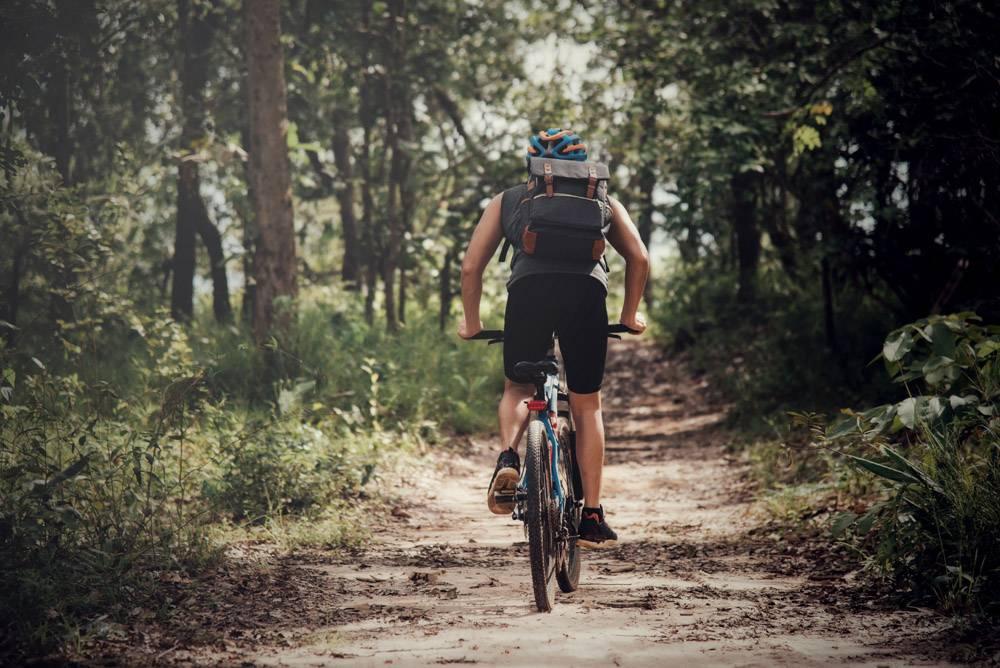 骑自行车的人在晴天_3972802