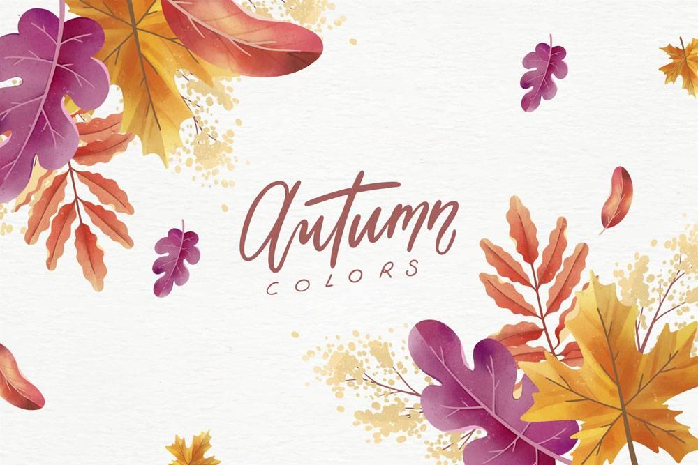 与五颜六色的叶子的拉长的秋天背景_9259524