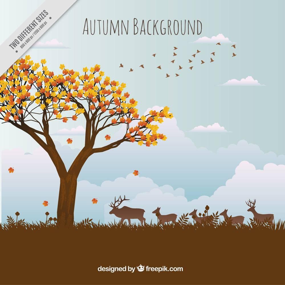 与动物的美好的秋天风景背景_910541