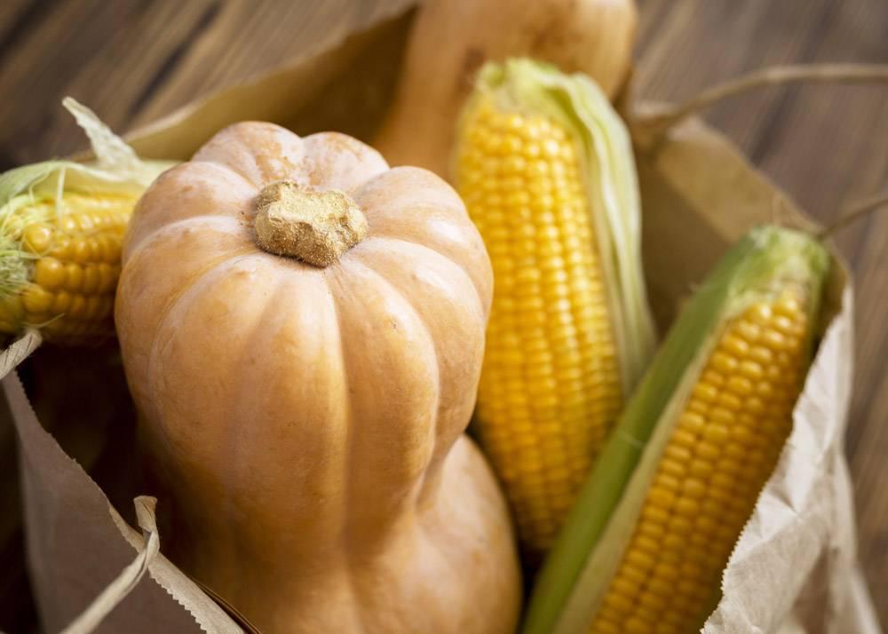 高角度秋季蔬菜安排_9852772